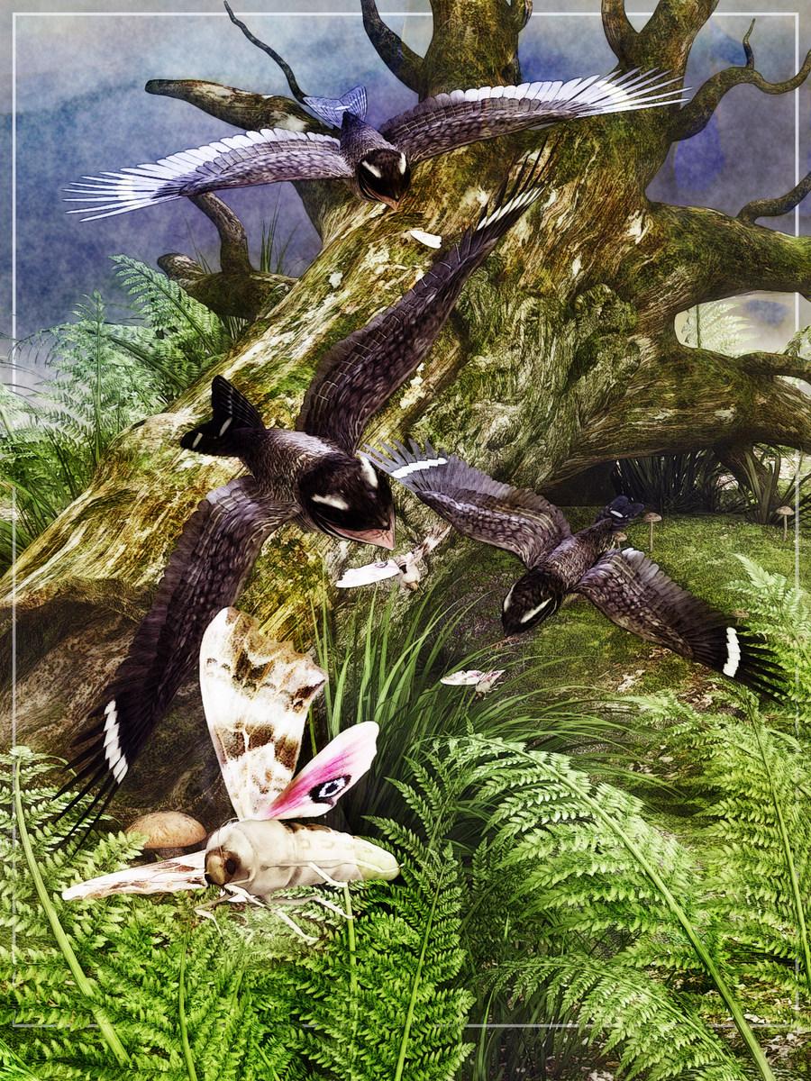 00 Grand Prize Nighthawks by Satira Capriccio.jpg