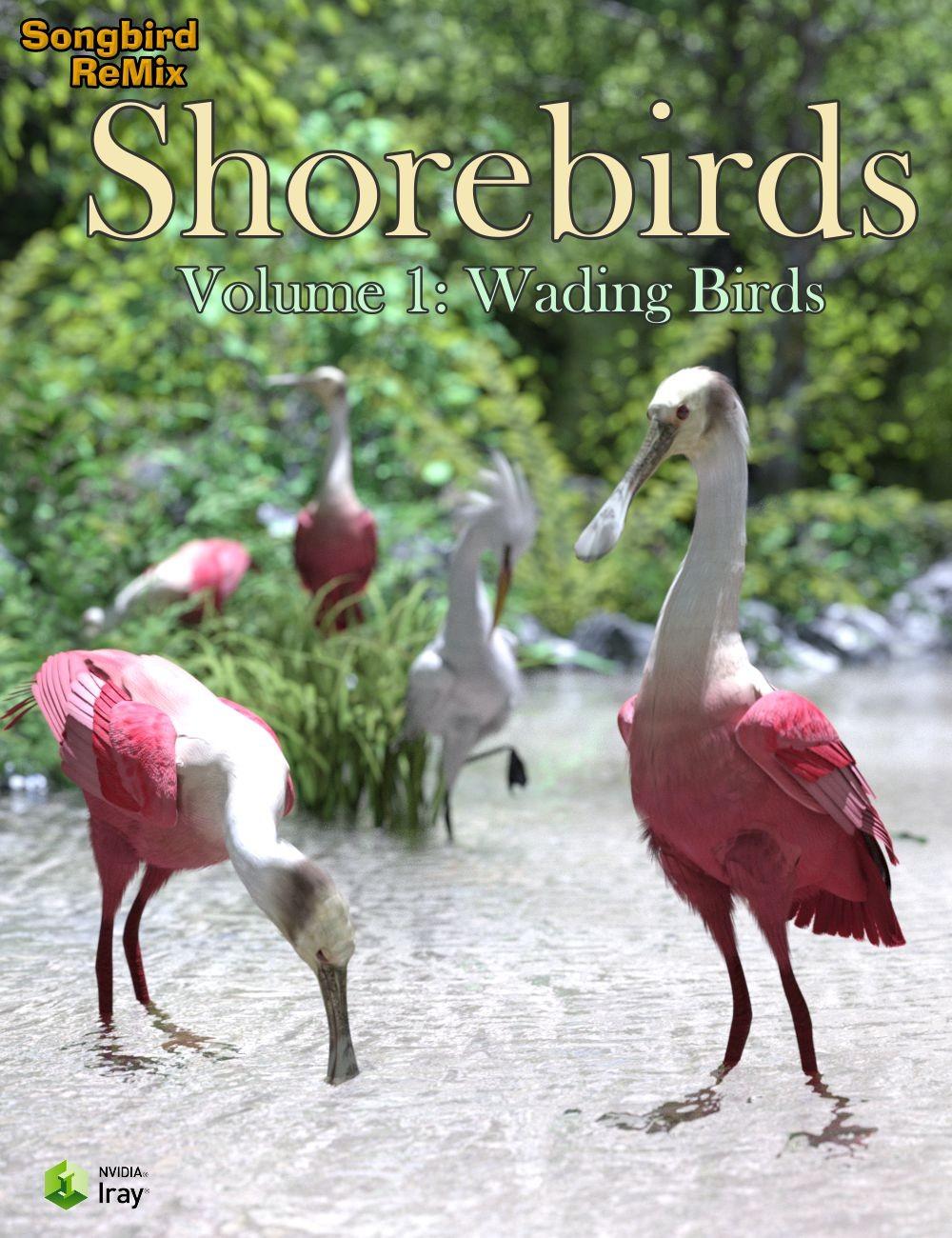 10084-sbrm-shorebirds-vol-1-wading-birds-main.jpg