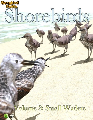10086-sbrm-shorebirds-vol-3-small-waders-main.jpg