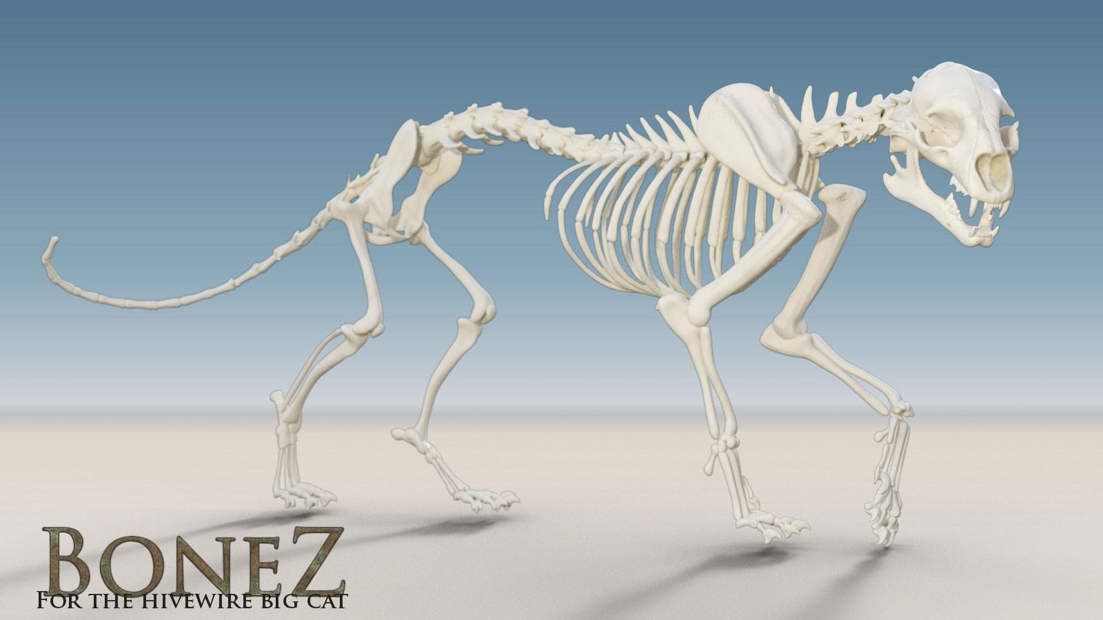 11556-bonez-for-the-hivewire-big-cat-main.jpg