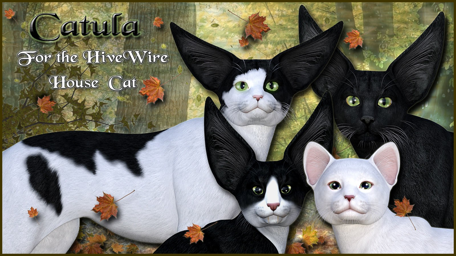 11713-catula-for-the-hivewire-house-cat-main.jpg