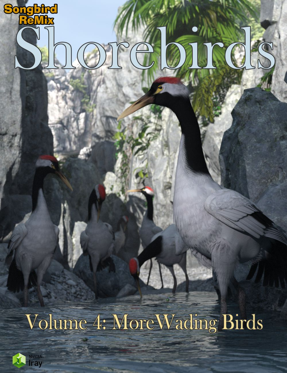 12019-sbrm-shorebirds-vol-4-main.jpg