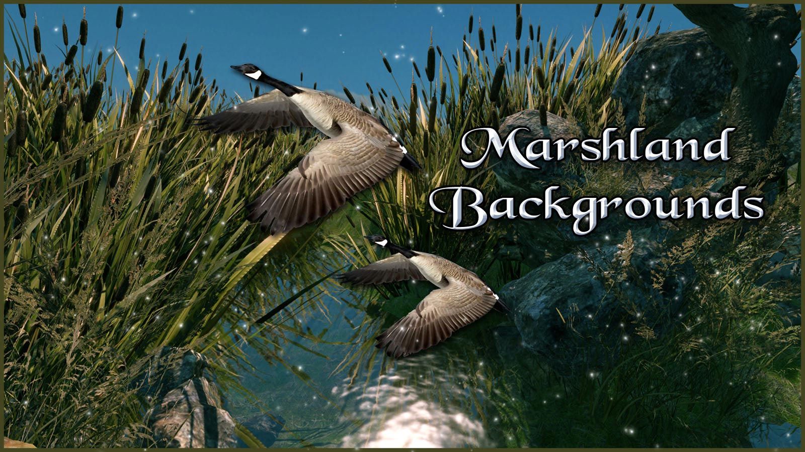 12020-marshland-backgrounds-main.jpg