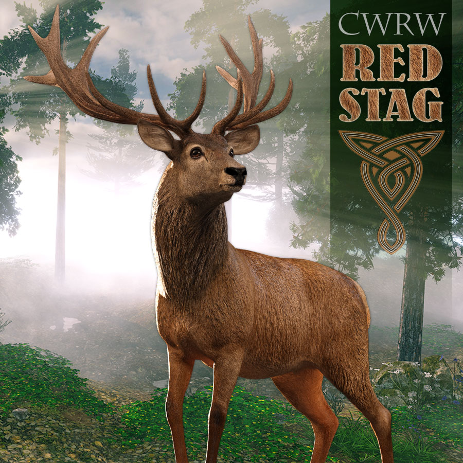 12022-cwrw-red-stag-news.jpg