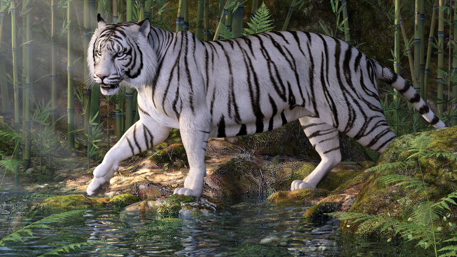 12103-cwrw-white-tigers-for-the-hivewire-tiger-main.jpg