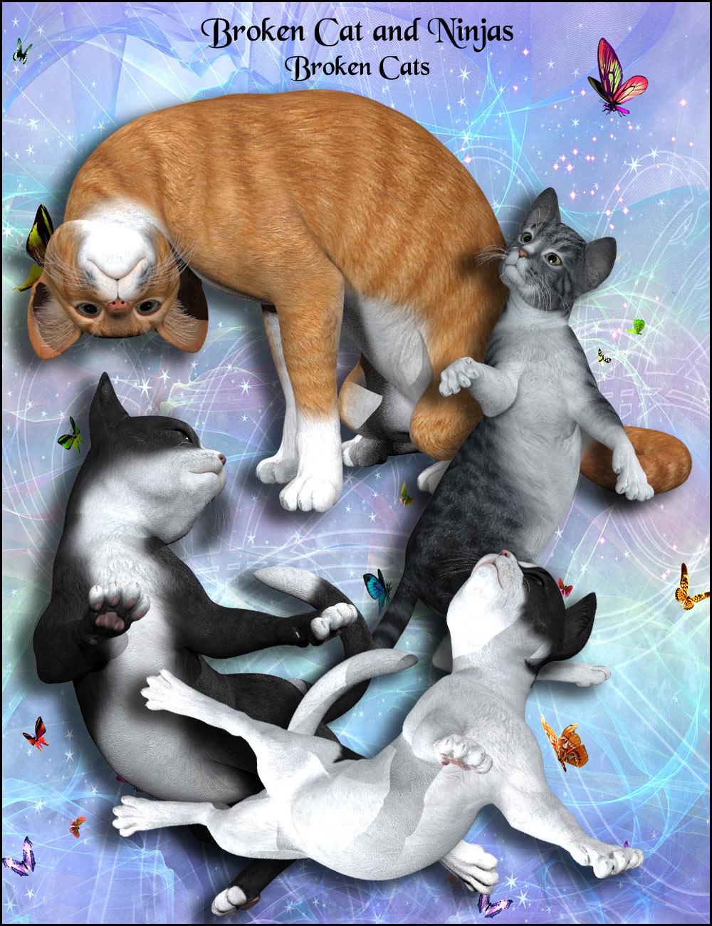 12104-broken-cats-and-ninjas-main.jpg