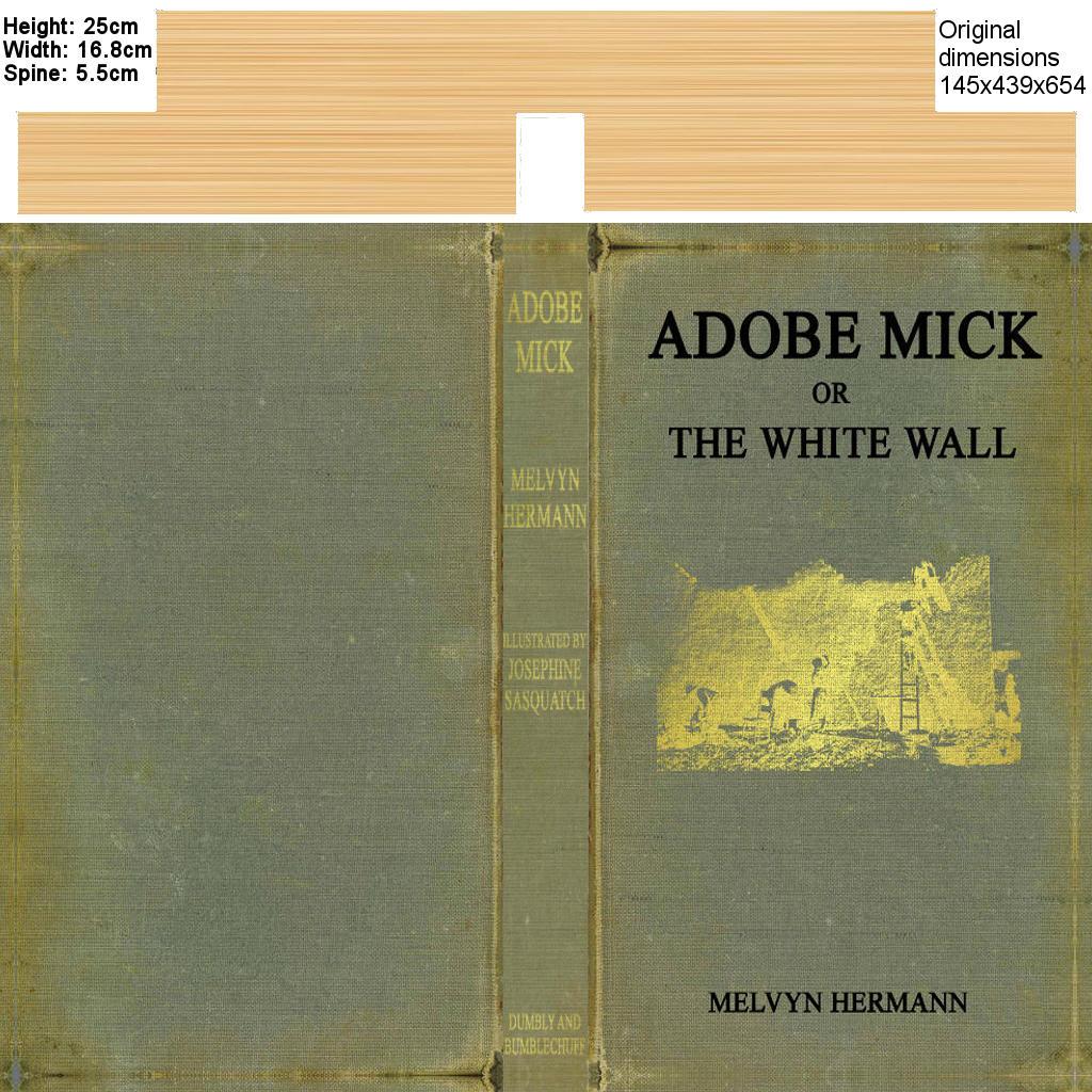 Adobe Mick Texture.jpg