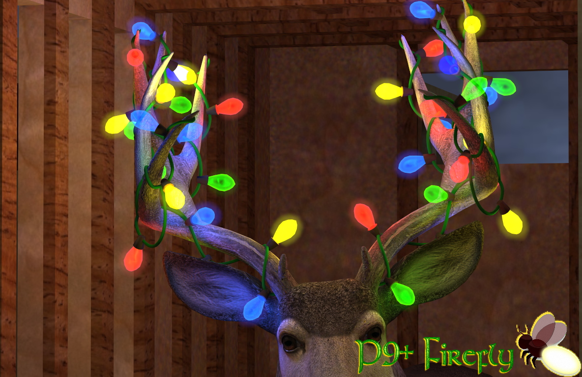 all lights ON - Firefly.jpg