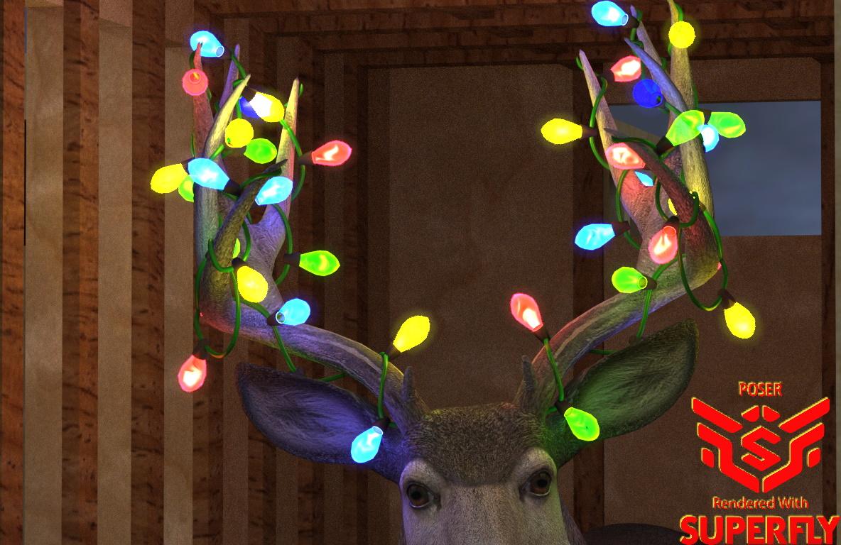 all lights ON - Sfly.jpg