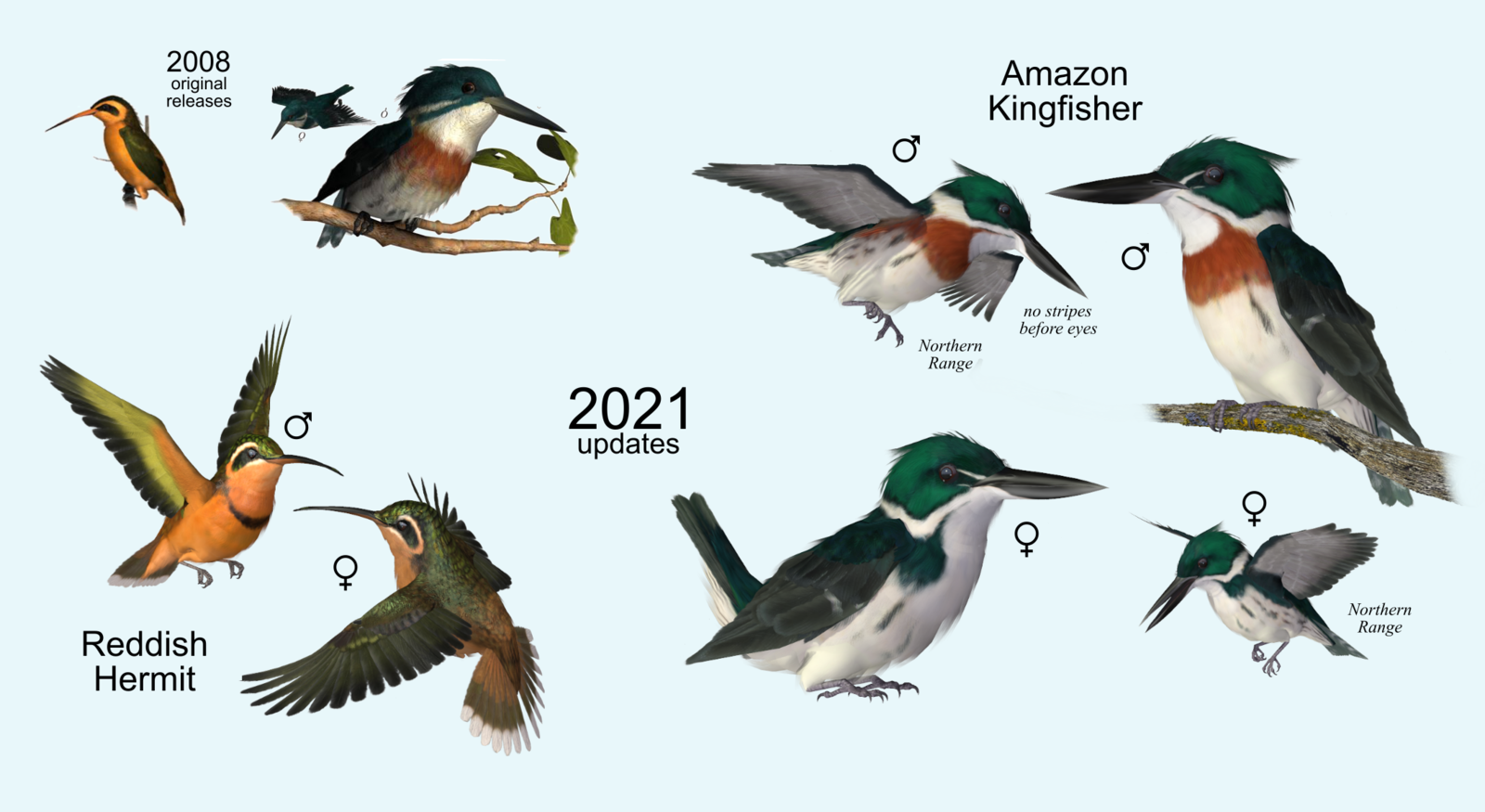 Amazon comparsion2.png