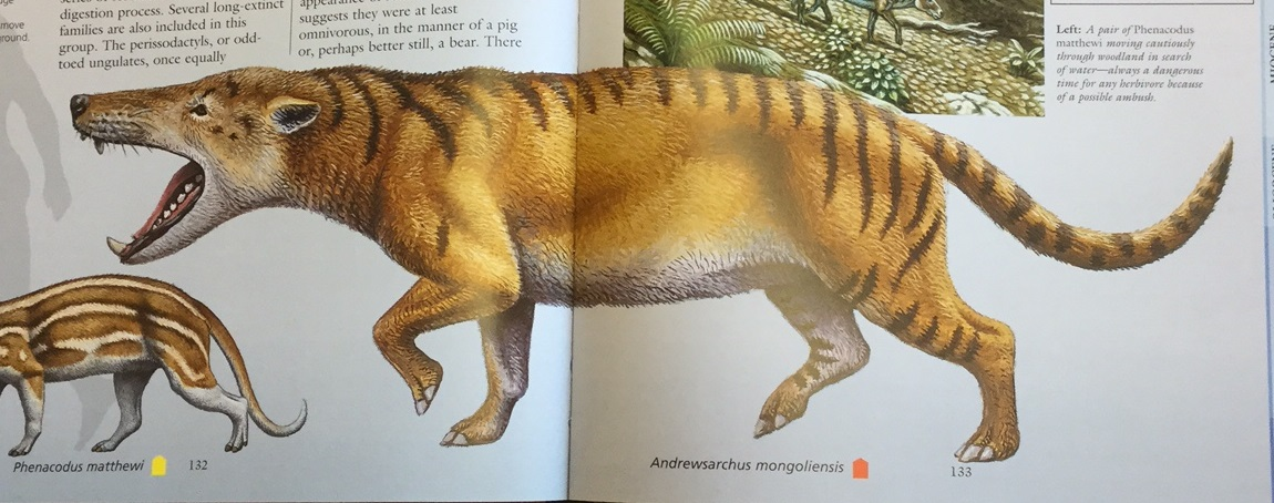 Andrewsarchus mongoliensis.jpg