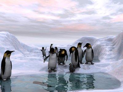 Antarctic Dawn.jpg