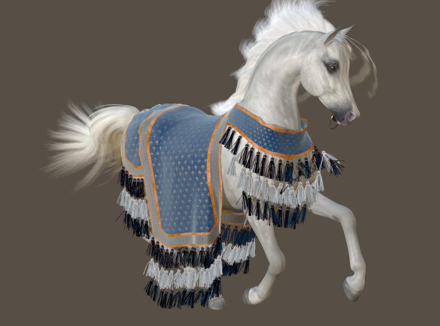 Arabian blanket 011.png