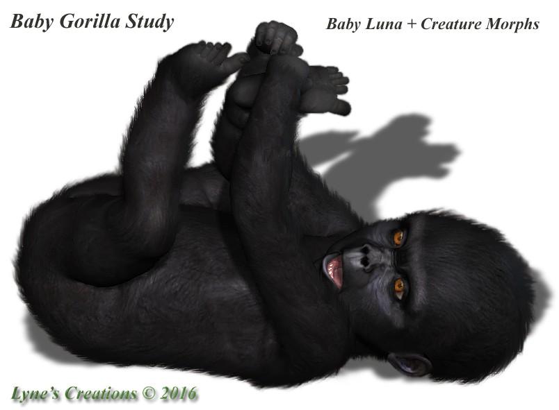 BabyGorillaViaLuna.jpg