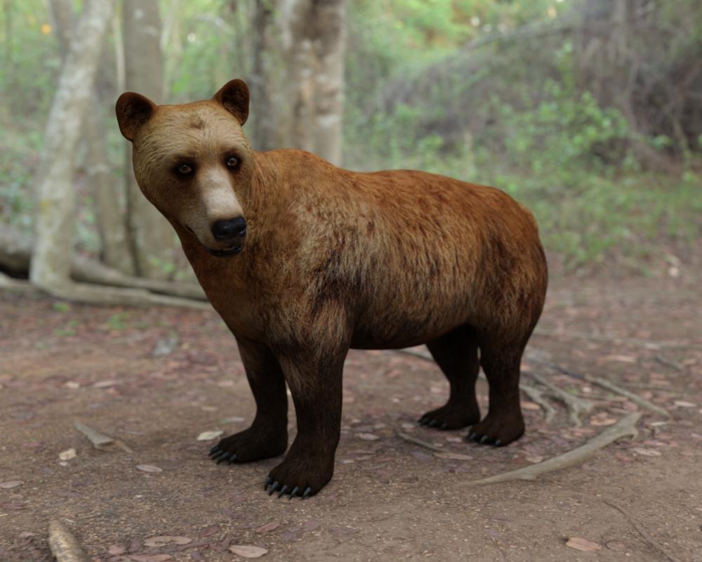 BearWIP01.jpg
