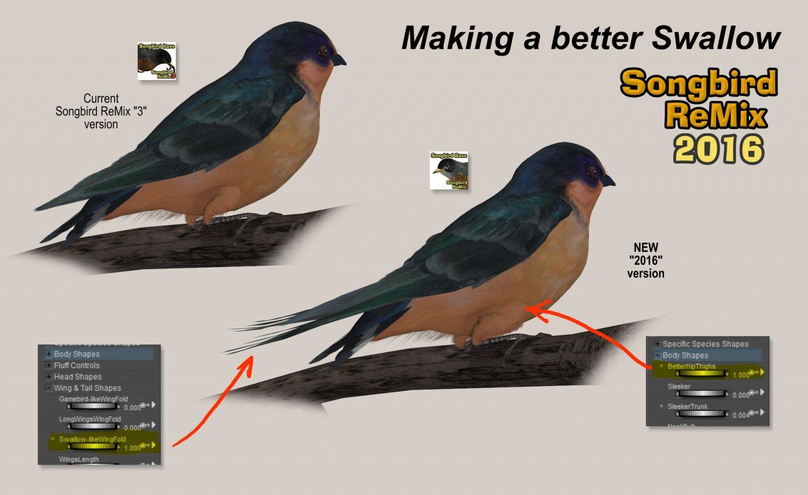 BetterSwallowPromo.jpg