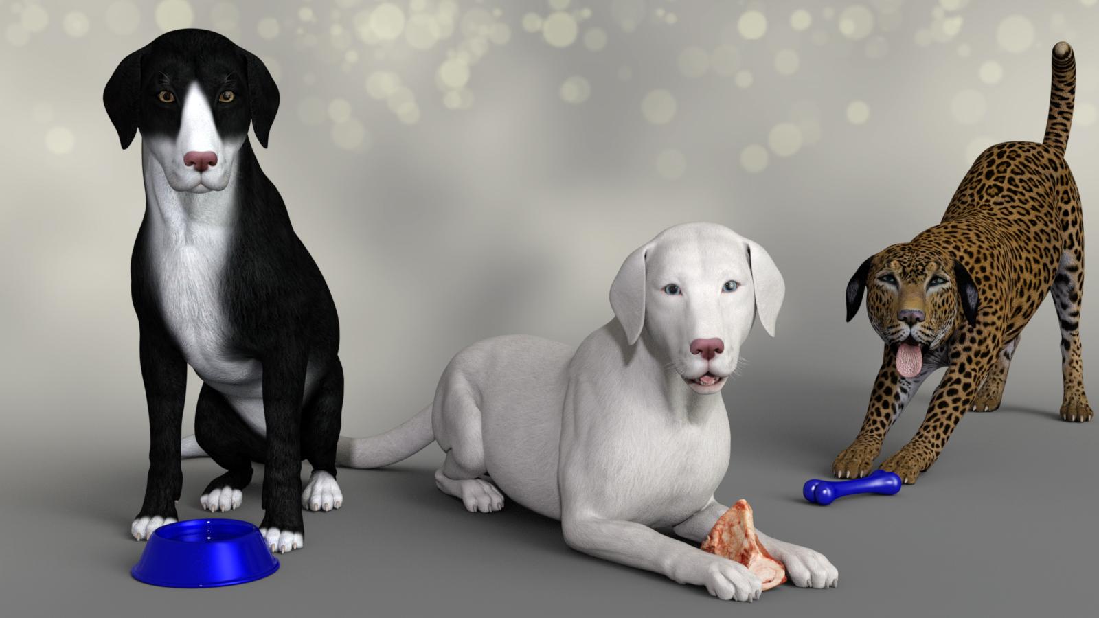 Big Dog2.jpg
