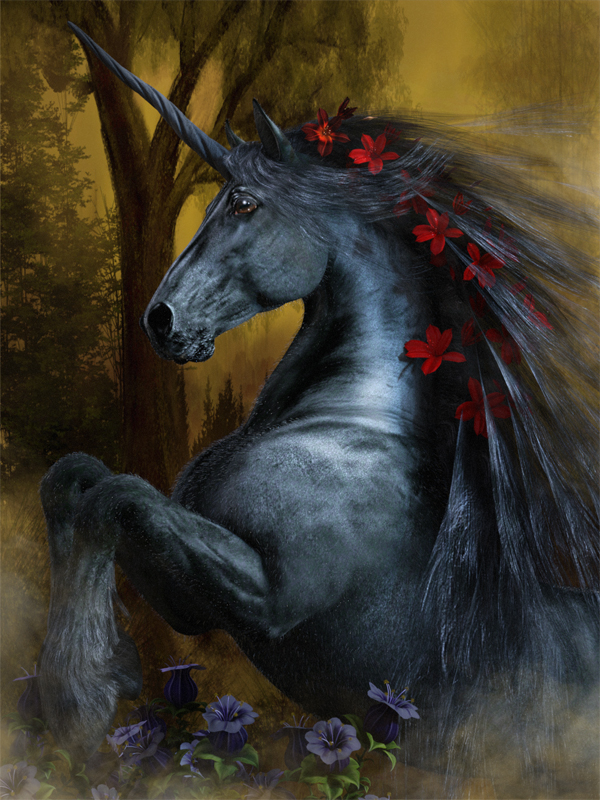 Black Beauty Unicorn 101z.jpg