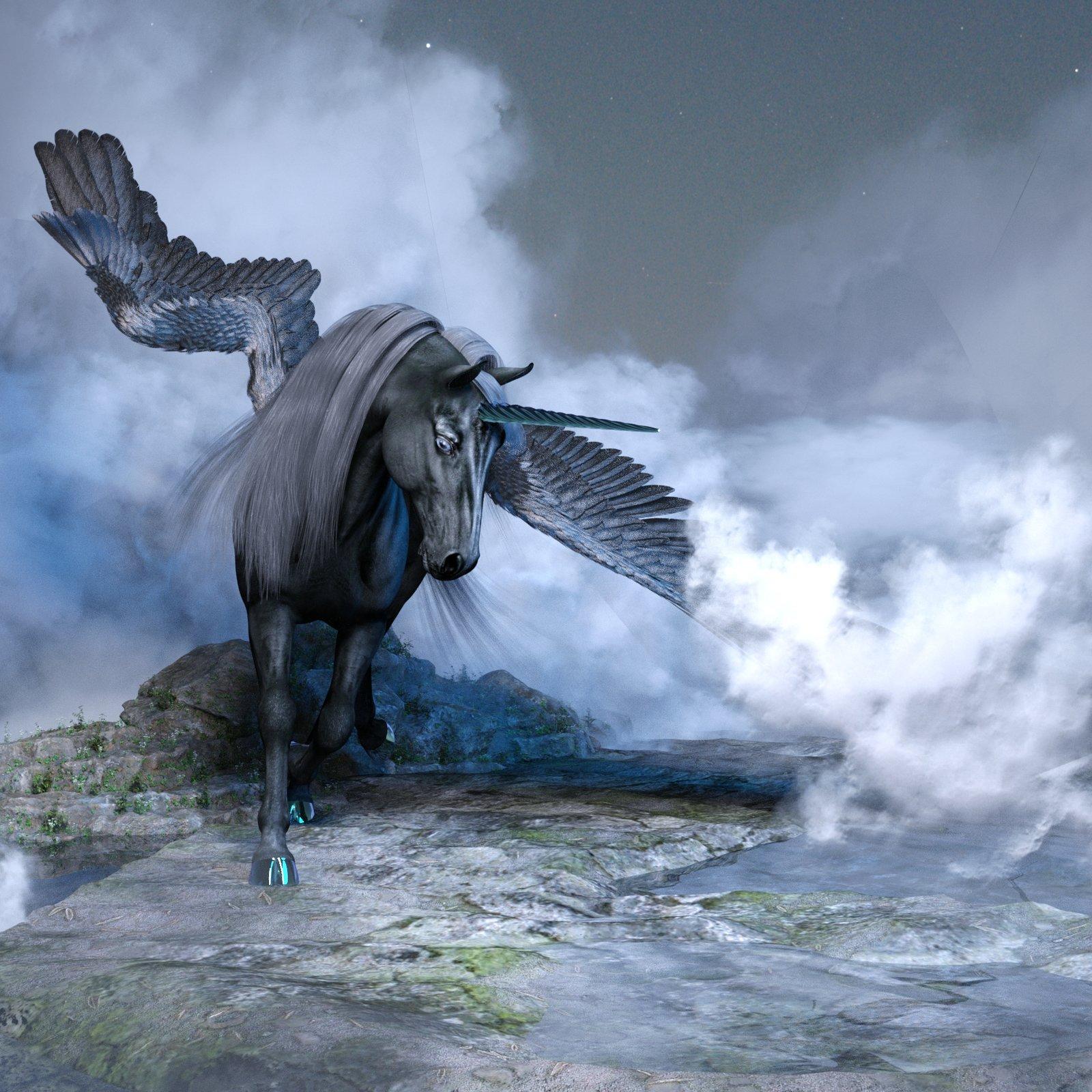 Black Pegasus.jpg