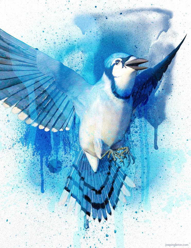 bluebird01.jpg