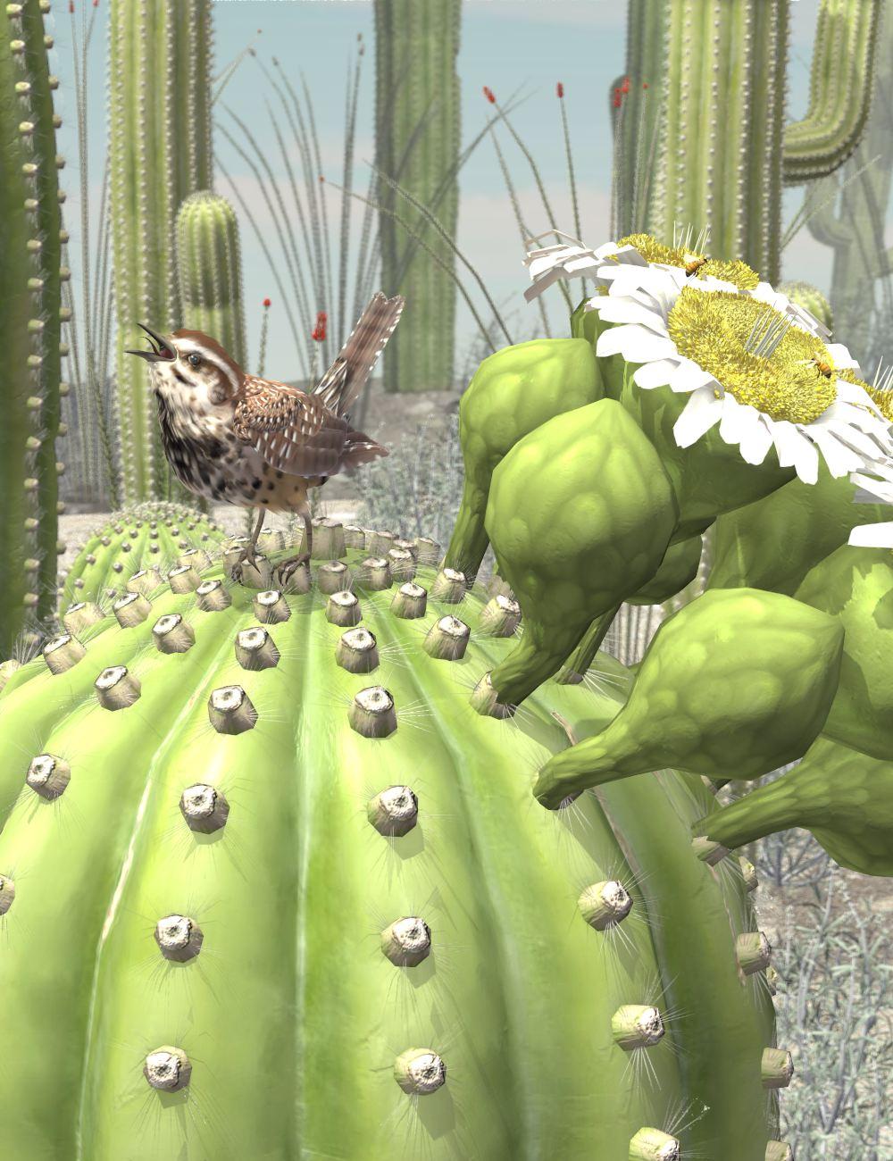 Cactus Wren Firefly.jpg