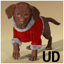ChristmasSuit-HWDog UD.duf.png