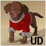 ChristmasSuit-HWDog UD.duf.png