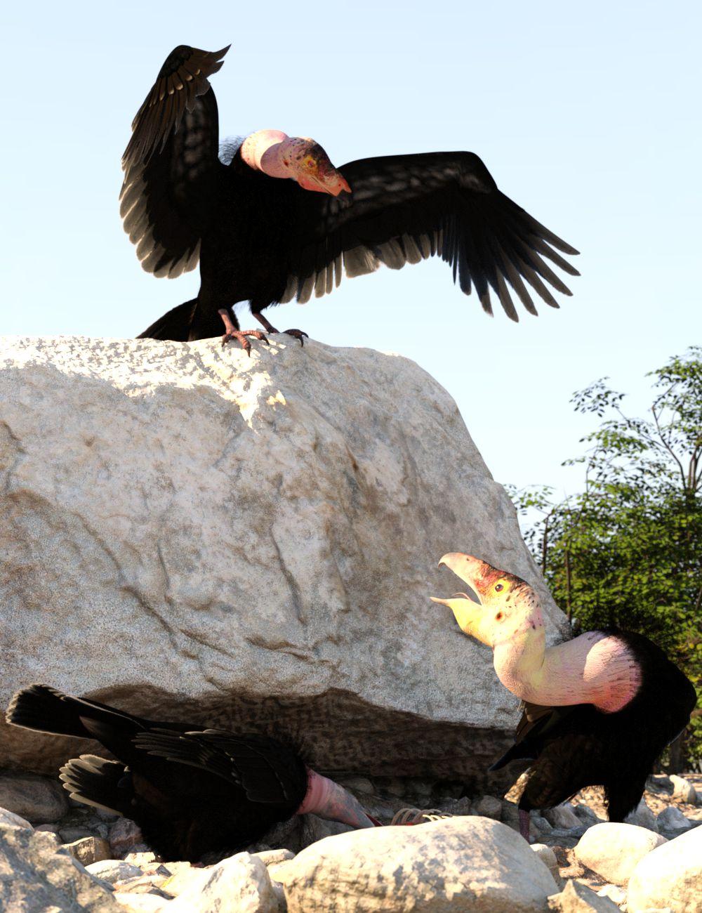 Condors.jpg