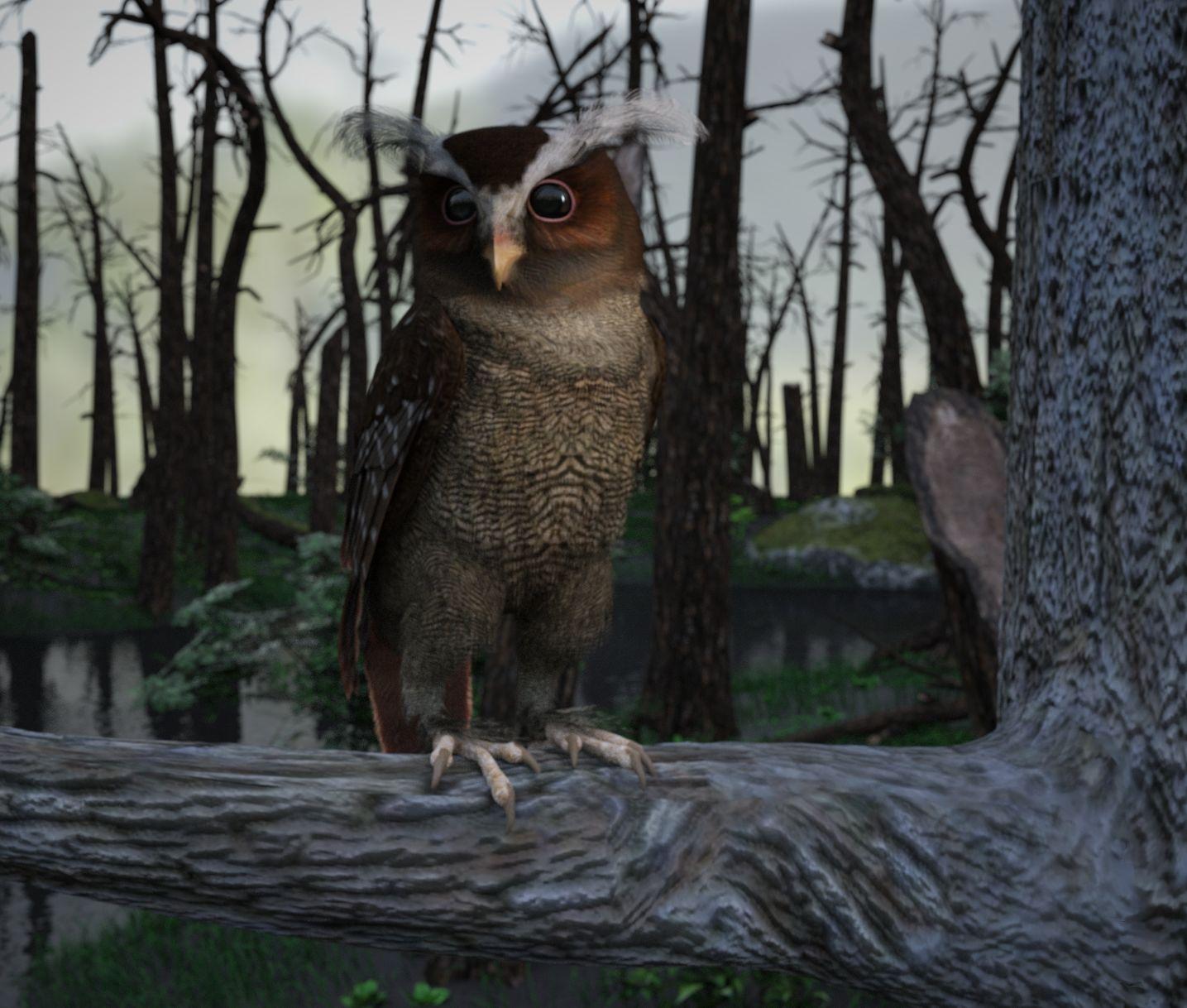 Crested Owl Iray.jpg