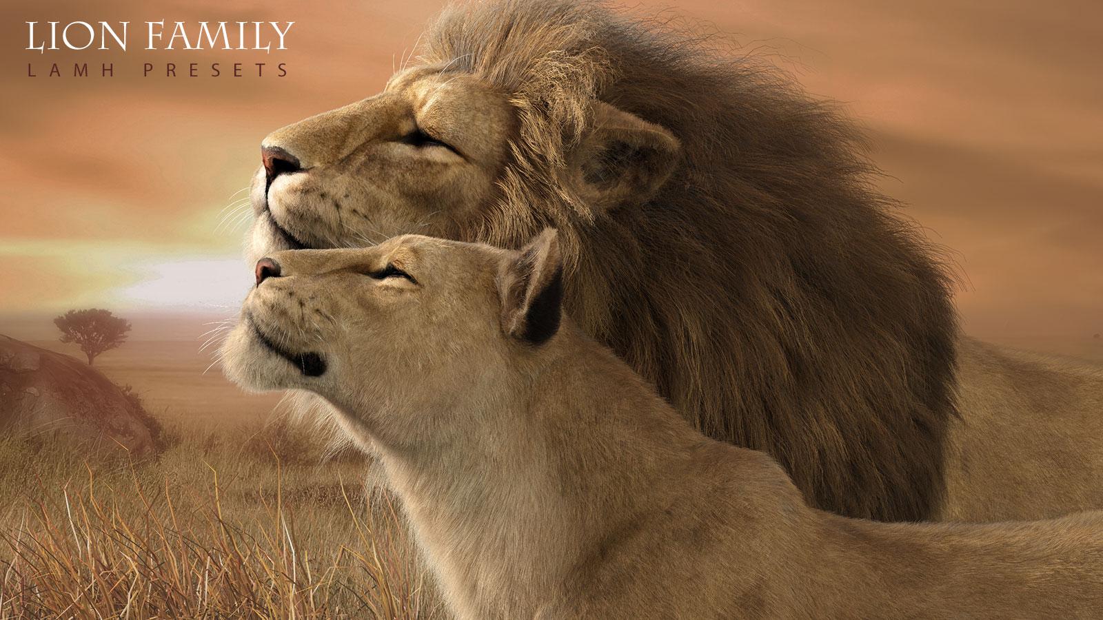 CWRW_LionFamilyLAMH_MAIN.jpg