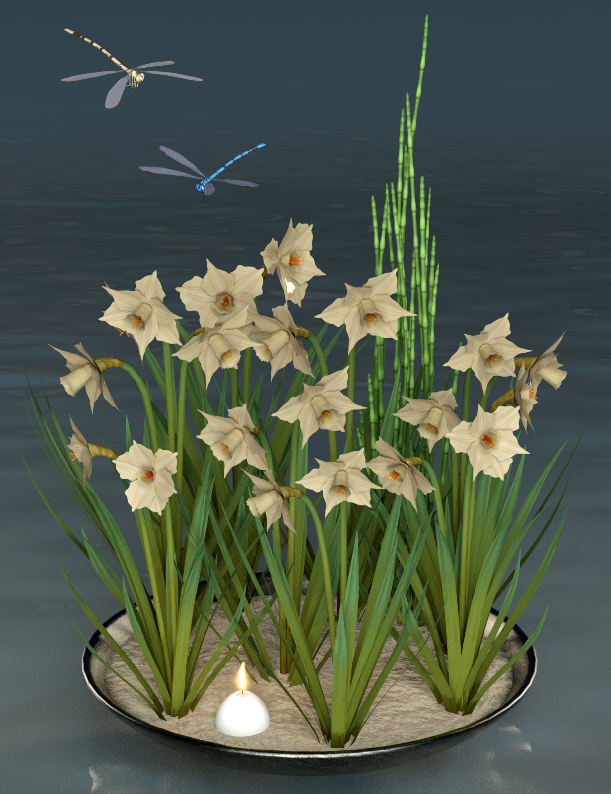 daffs and dragonflies.jpg