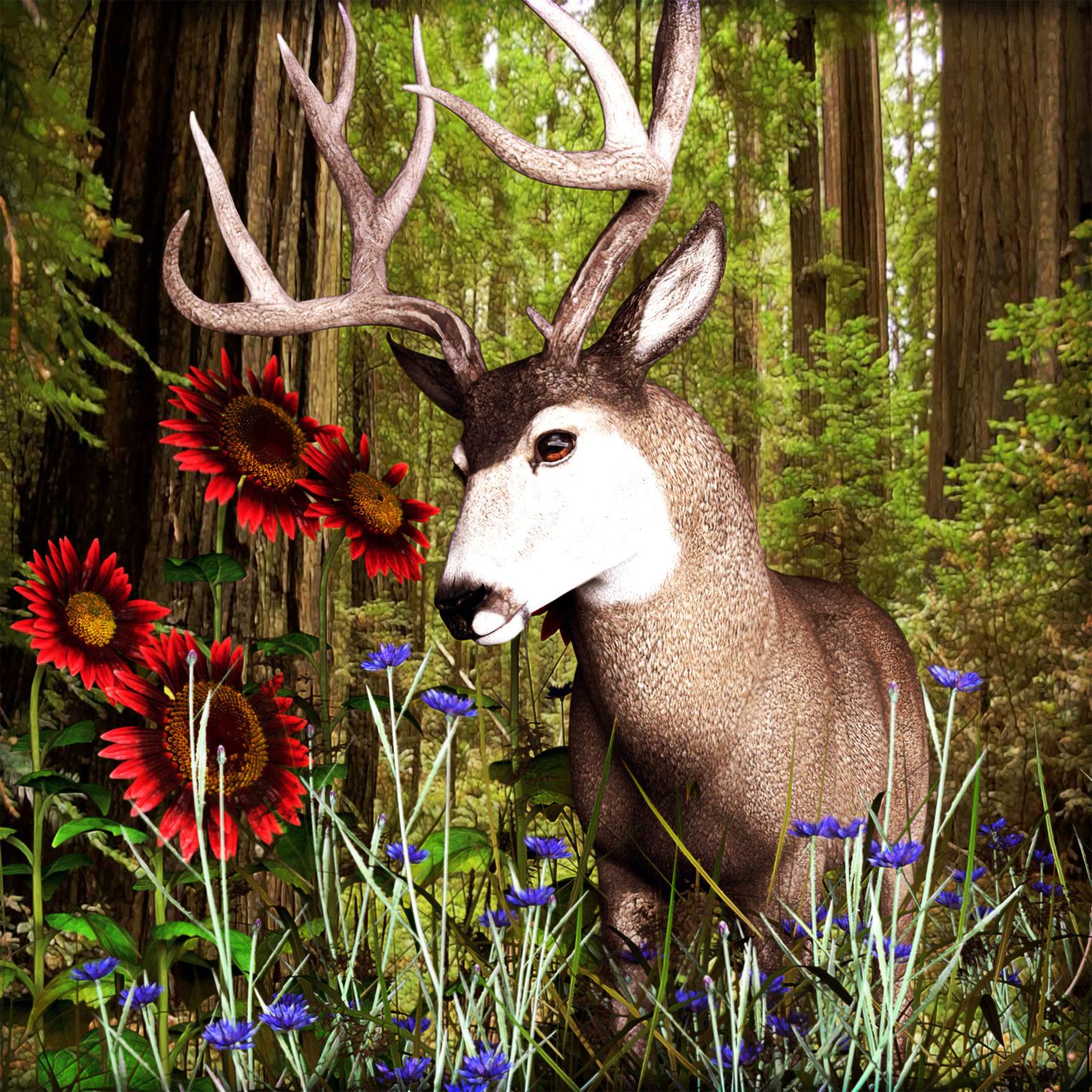 deer-bright23jpeg.jpg