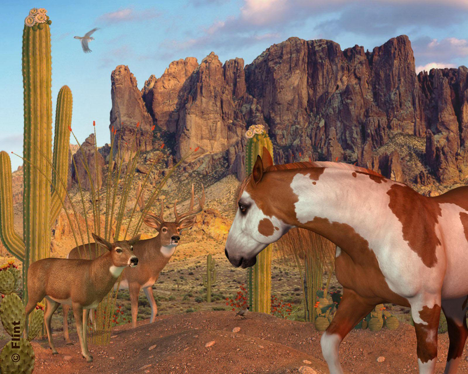 Desert Encounter.jpg