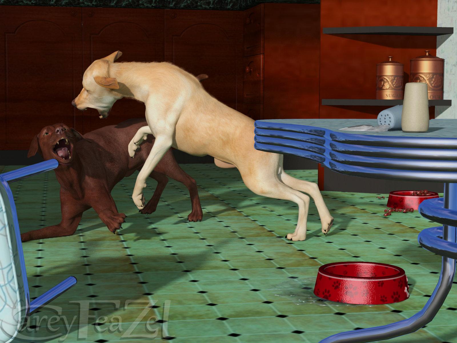 dog-play.jpg