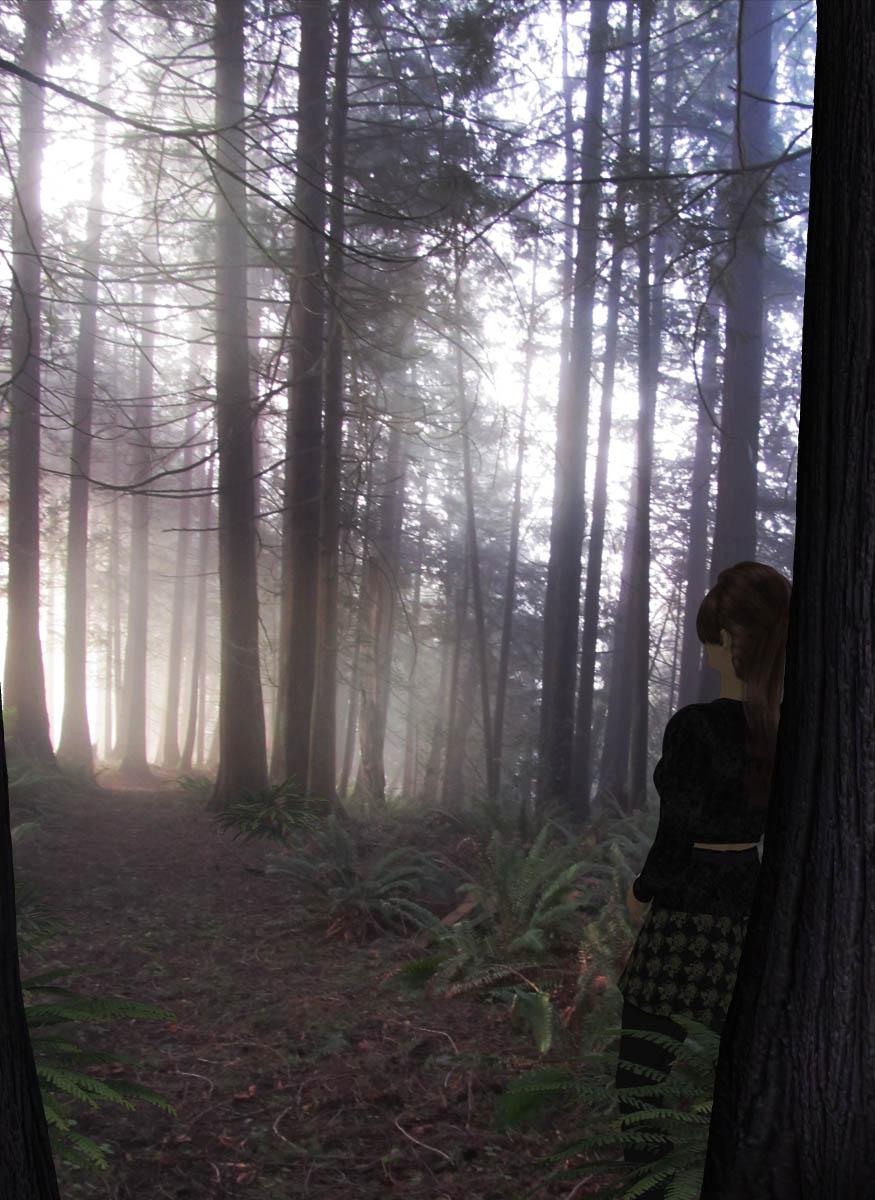 Enlightening Silence of Forest.jpg
