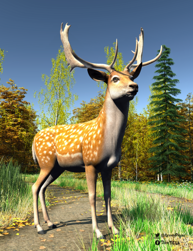 Fallow Deer on track.png