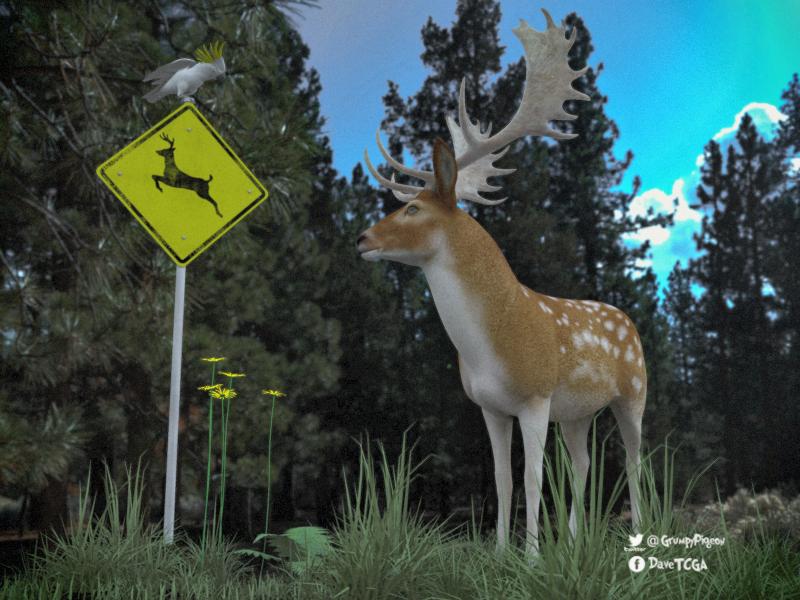 Fallow Deer.png