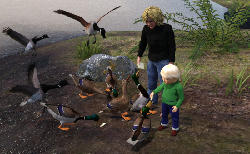 feeding ducks.png