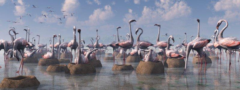 Flamingos of the Great Rift Valley lg.jpg