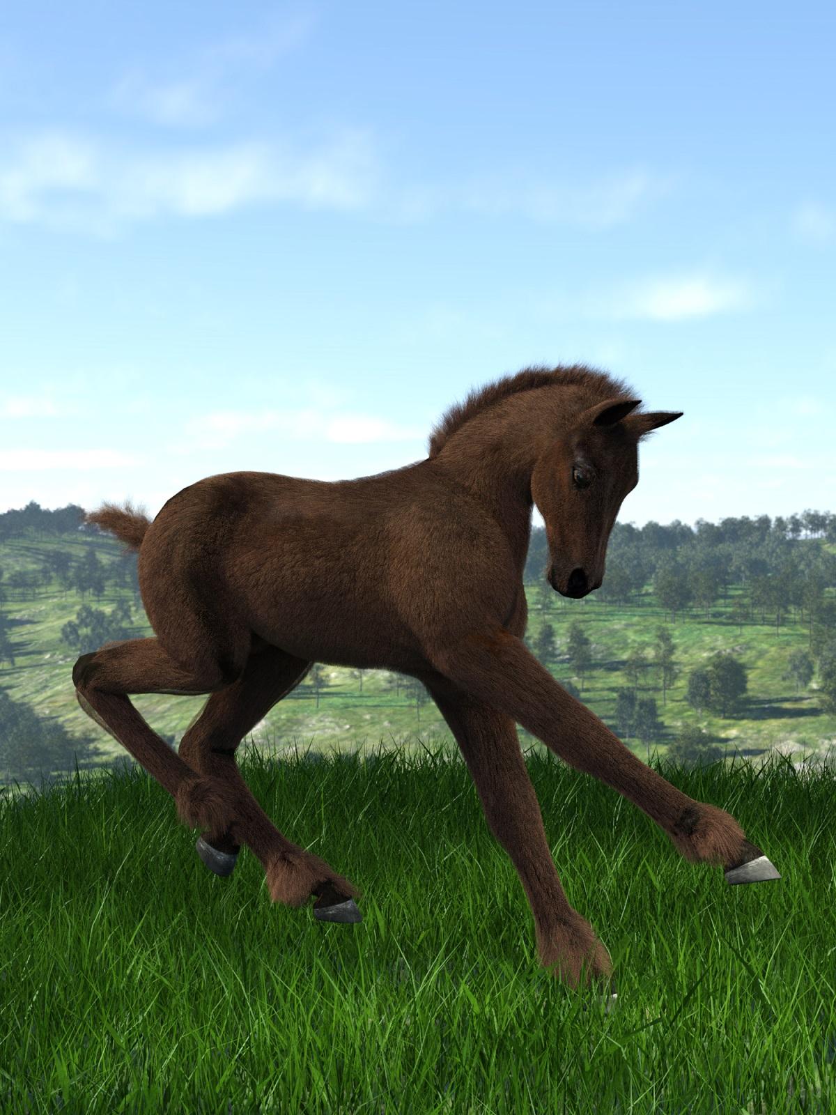 foal lamh test.jpg