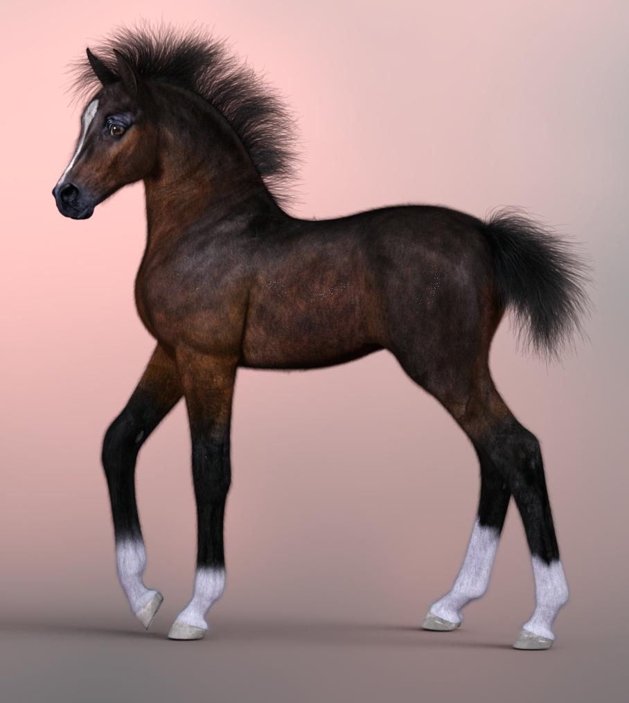 FoalBaseBay_SBHstyle2_a.jpg