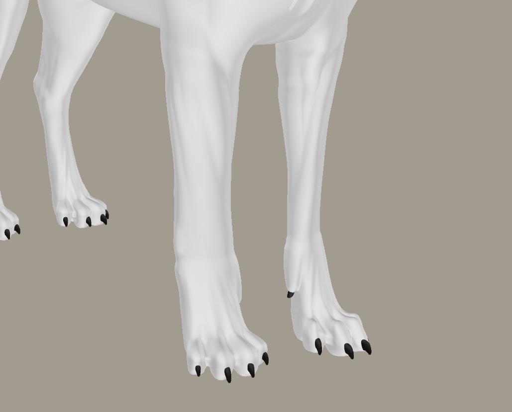 foot 1.png