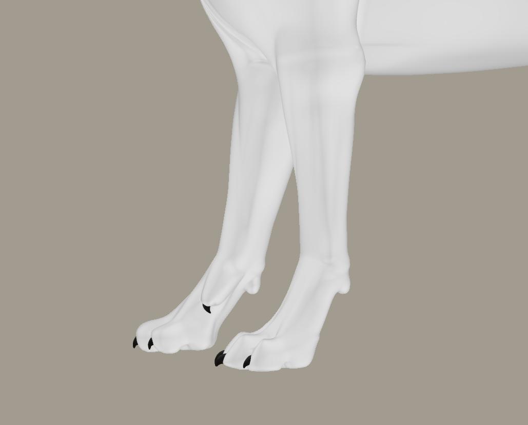 Foot3.png