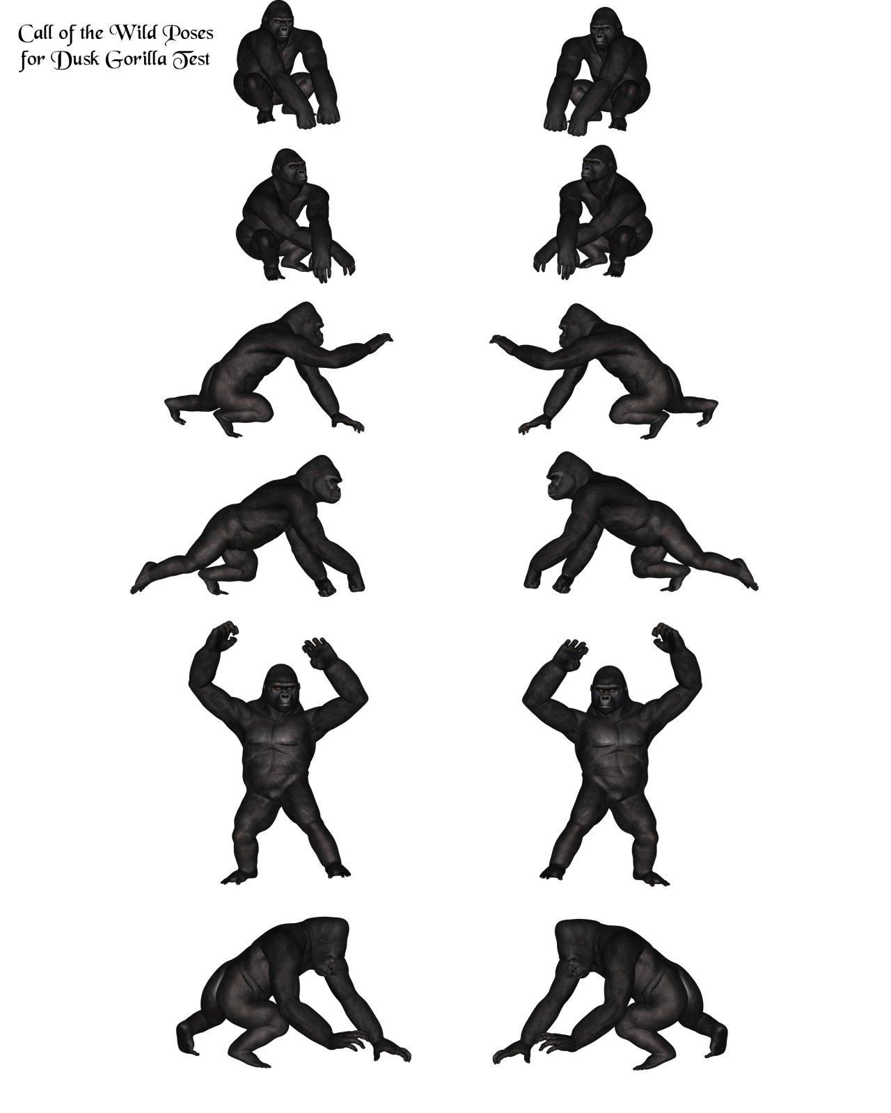 Full poses.jpg