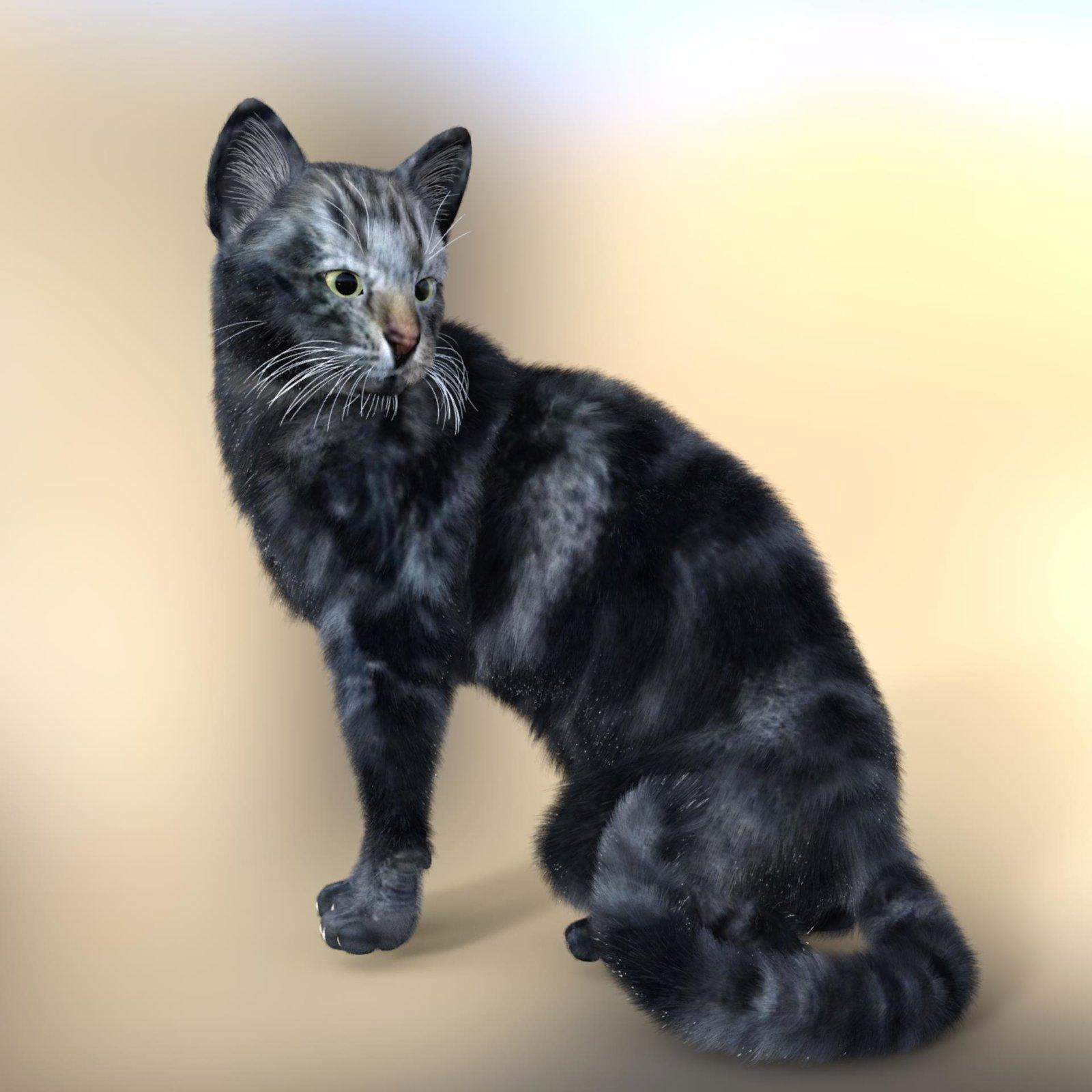 Furry LynxOut.jpg