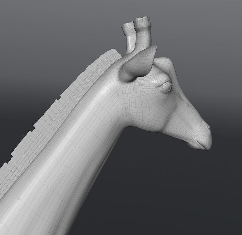 GiraffeWork44.JPG