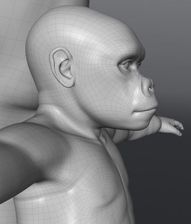 GorillaWork102.JPG