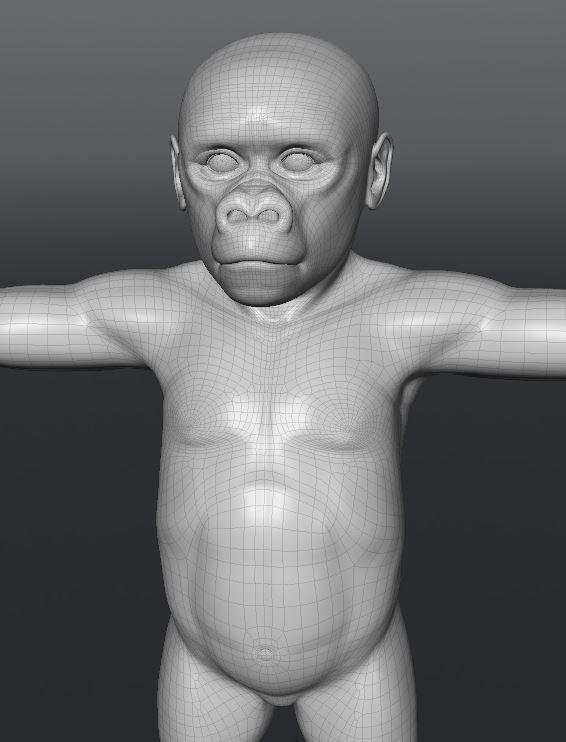 GorillaWork104.JPG