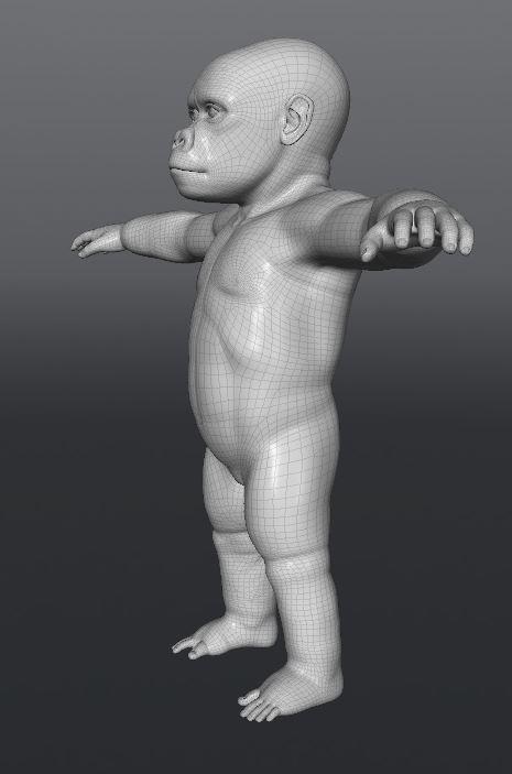GorillaWork110.JPG