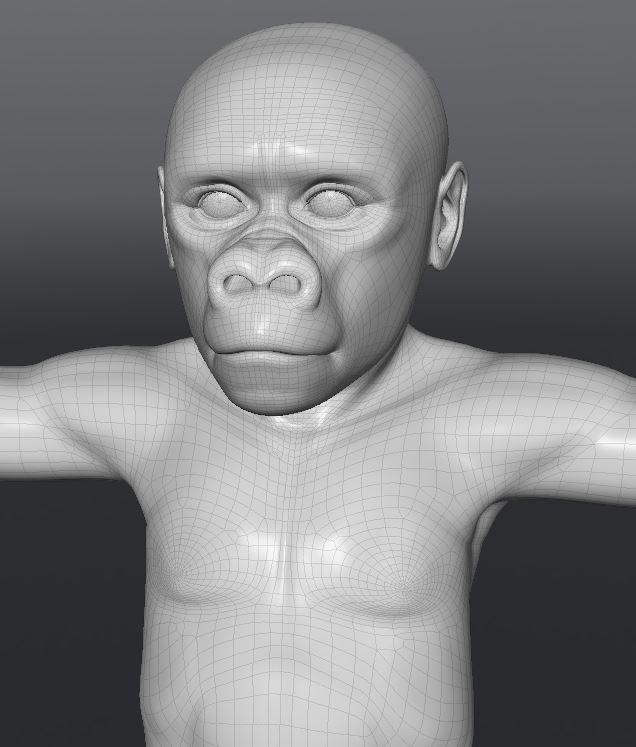 GorillaWork116.JPG
